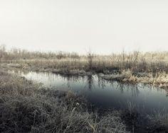Simon Harsent | Frost