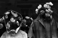 10.1.13 #flowers