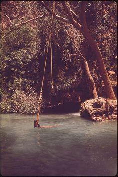 rope swing #water #girl #calm #summer #swing