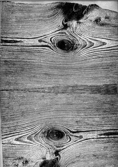 Tumblr #woodgrain