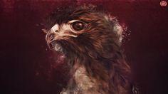 Hawk by ~check2cc on deviantART #of #prey #bird #beak #illustration #painting #hawk #animal #beauty