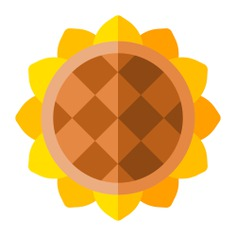 See more icon inspiration related to flower, botanical, sunflower, blossom, petals and nature on Flaticon.
