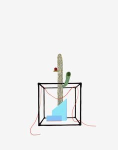 Stephanie Rohlfs | PICDIT