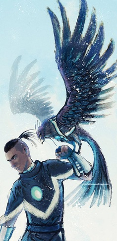 Avatar The Last AirBender Sokka Warrior