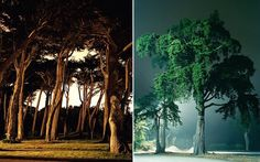 nightlandscapes-30 #night #photography #light