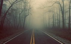 Foggy Road Landscape #inspiration #photography #landscape