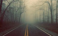 Foggy Road Landscape