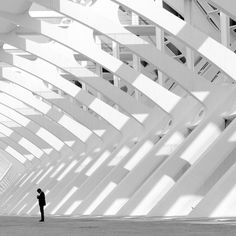 EL CASO DEL ESPIA ALADO! | por MisterKey #man #architecture #white