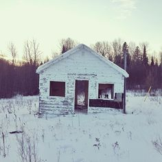 Find momo in a house portrait. #house #hidden #winter #snow #frost #cabin #dog