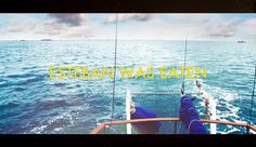 Más tamaños | travelling with Steve Zissou | Flickr: ¡Intercambio de fotos! #aquatic #life
