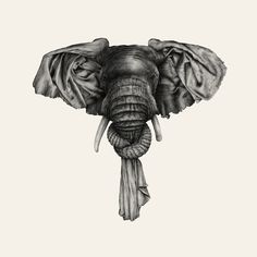 Ugo Gattoni - Elephant #gattoni #ugo #elephant