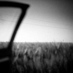 Poetry #photography #white #black #and