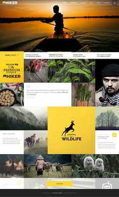 HIKER Photography WP Theme on Web Design Served #grid