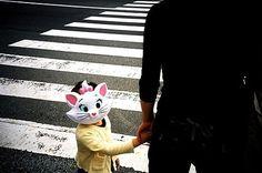 FFFFOUND! | you are adorable en Flickr: ¡Intercambio de fotos! #catface