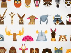 Animals #minimalist #illustration #wildlife #animals