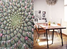 dining room cactus #interior #design #decor #deco #decoration