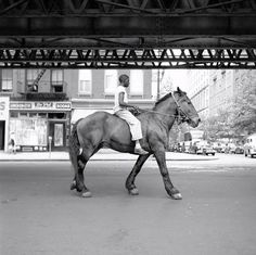 vivian maier #vivien #white #1950s #black #photography #and #maier