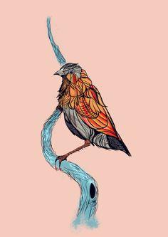 Unstinted Birds on Behance