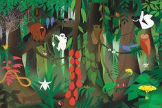 Madagascar - Clayton Junior #illustration
