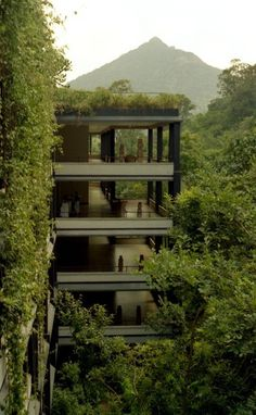 "Image Spark Image tagged ""house"" egonomist #vines #landscapes #green"
