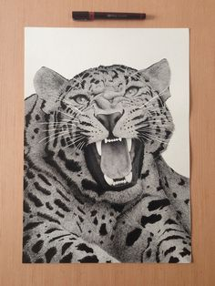 Xavier Casalta | Inspiration DE #leopard #ink #big #cat #whiskers #jaws #illustration #snarl #drawing #sketch
