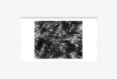 Ilan Rubin by Javas Lehn Studio #site #website #web design