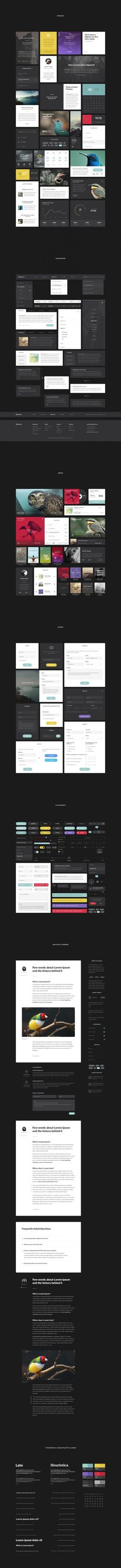 Aves UI Kit #graphs #design #interface #ui #kit