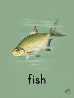 fish Art Print by Ladybird Books Easyart.com #vintage #artprints #print #design #retro #art #bookcover