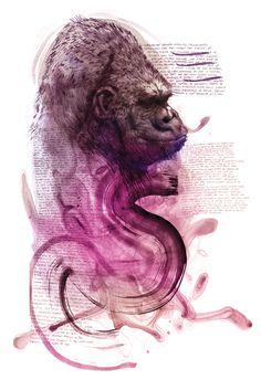 #gorilla #illustration