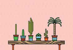 Cactus Shelf #palm #tree #home #succulent #illustration #cactus #shelf