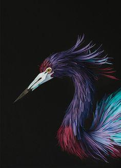 New Paper Birds from Diana Beltran Herrera #sculpture #construction #bird #illustration #art #paper #dimensional