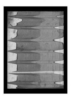 """3.8"" - Art Works by Tuscani Cardoso #art #landscape #black and white #scan #illusion #psychedelic #op #tuscani cardoso"