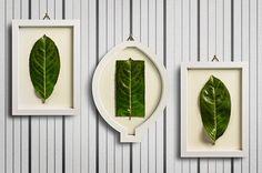 Improbabilità #colarusso #frames #improbability #giuseppe #leafs