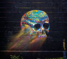 skull vienna #graffiti #paint #spray #skull