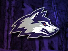 Huskies #sport #branding #illustration #wolf #logo