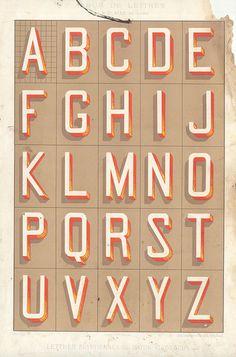 photo #type #specimen #alphabet #vintage