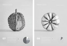 Gemma Warriner | UTS Visual Communication Grad Show 2013 #visualisation #infographics #food #photography #data #visualization