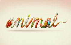 Marija Tiurina #logotype #collaboration #illustration #species #type #animal #typography