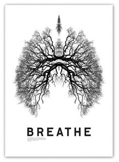 848246317_e4027c95ba_b.jpg (JPEG Image, 749 × 1024 pixels) - Scaled (59%) #breathe #lungs #tree