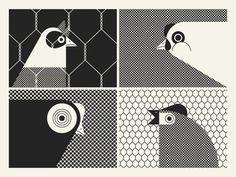 #illustration #chicken