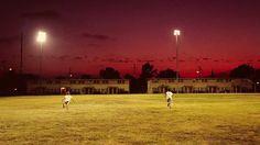 Flying lotus #field #red #sky #lit #playing #flying #flood #lotus