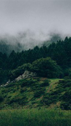 Beautiful Back to Nature iPhone 7 Wallpaper
