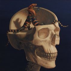 Skeletal Figures by Sandra Yagi #skeleton #salamander #sandra #yagi #alchemy #illustration #reptile #skull #lizard