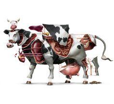 100% BOVINO on Behance #cow