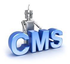 CMS1-1024x938.jpg