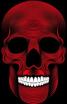 Skull on Behance #illustration