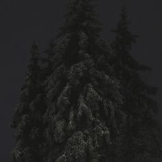 untitled on the Behance Network
