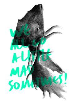 I'm not a hipster #silkcreen #fluo #deer #owl #hipster #notebook