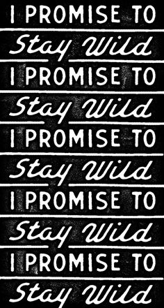 Stay Wild - Dan Cassaro #creed #typography