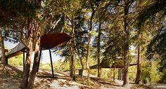 CJWHO ™ (Tree Snake Houses, Bornes de Aguiar, Portugal by...) #construction #design #treehouse #portugal #wood #architecture
